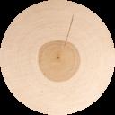 Light birch